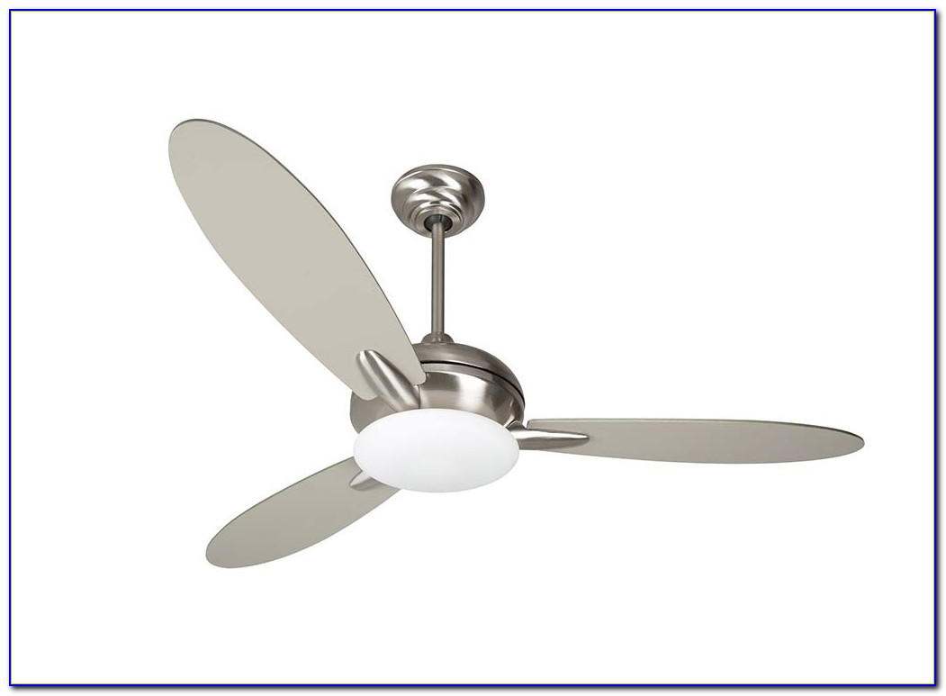 Stainless Steel Ceiling Fans