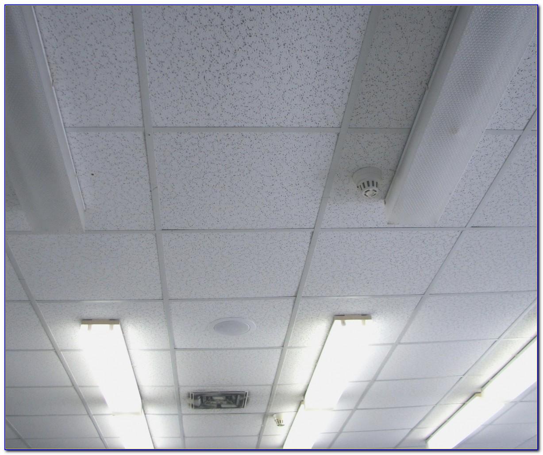 24 X 48 Acoustic Ceiling Tiles