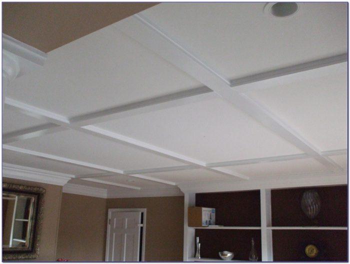 Basement Drop Ceiling Lighting Ideas