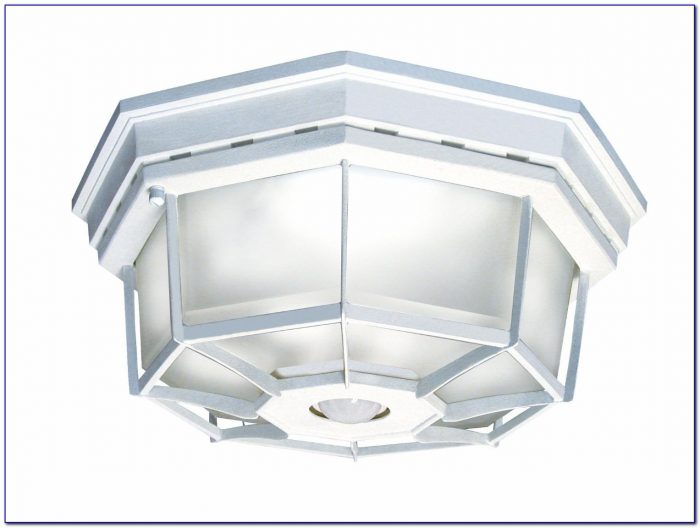 Ceiling Mount Motion Sensor Light Fixture