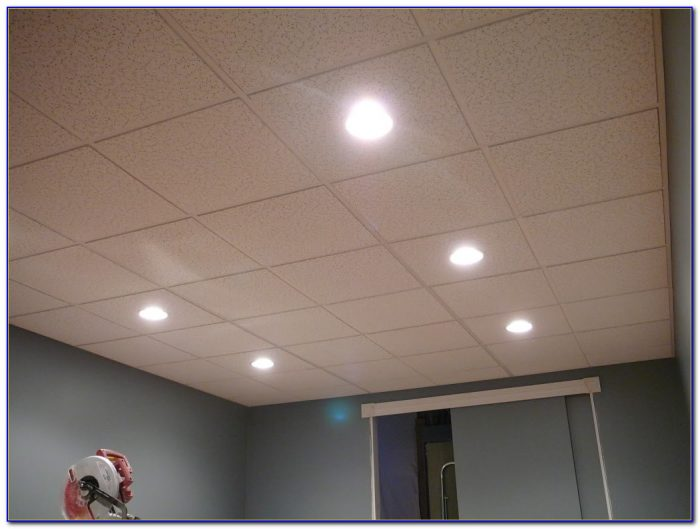 Drop Ceiling Panels 2x4