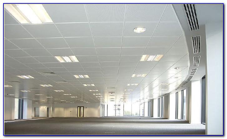 Food Safe Ceiling Tiles