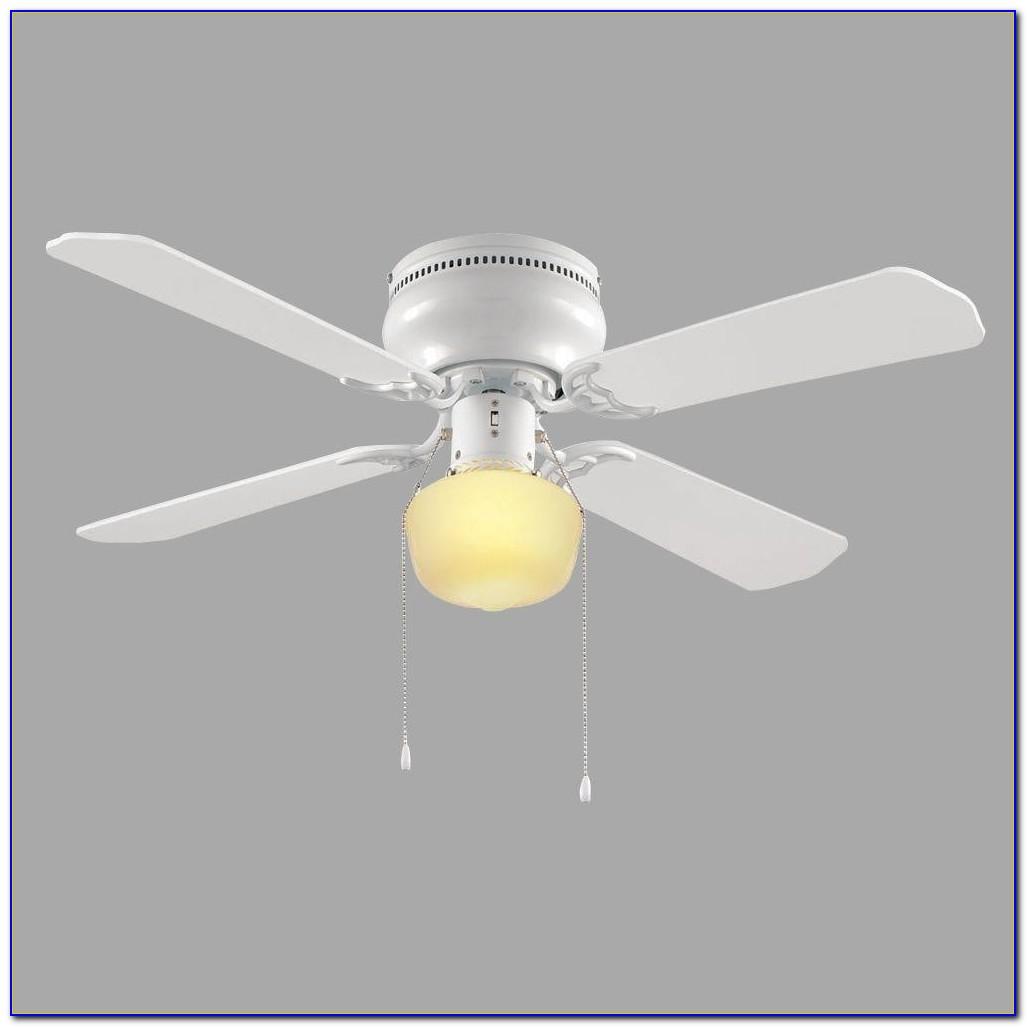 Light Bulb For Ceiling Fan