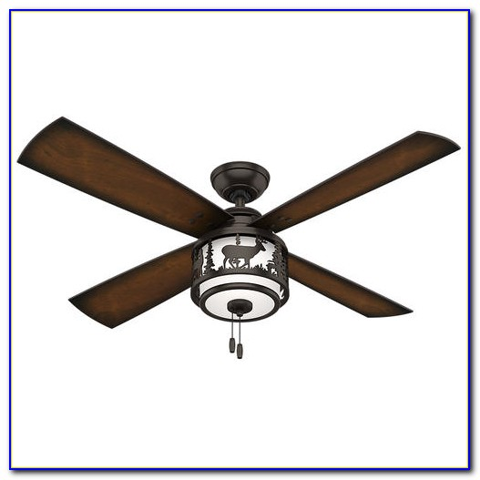 Ceiling Hunterfan Menards Ceiling Fan Heated Ceiling Fan: Hunter Ceiling Fan Light Kits Antique Brass