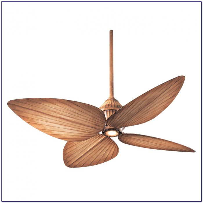 Artemis Ceiling Fan Hong Kong