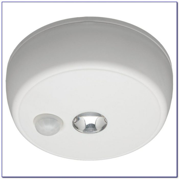 Motion Sensor Ceiling Light Indoor