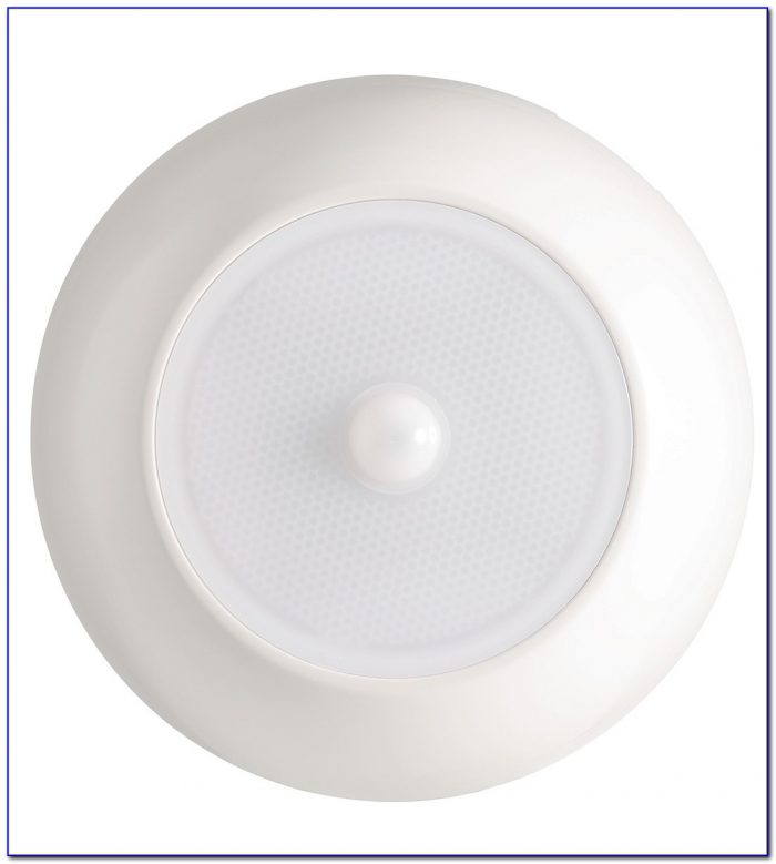 Motion Sensor Indoor Ceiling Light Fixture