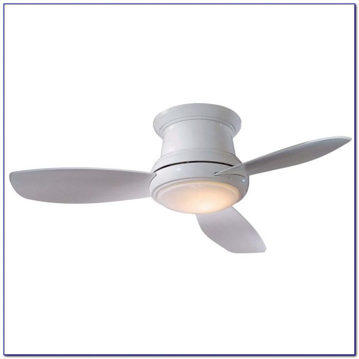 Petite Ceiling Fan With Light