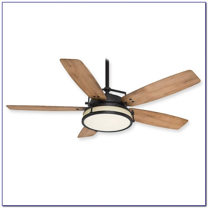 Waterproof Outdoor Ceiling Fans With Lights