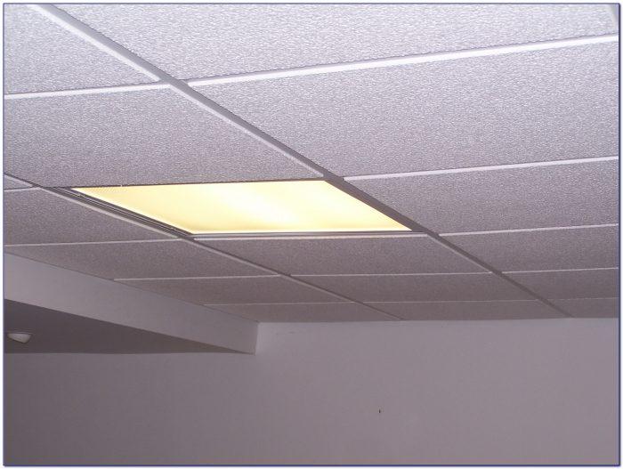 Drop Ceiling Fluorescent Lights