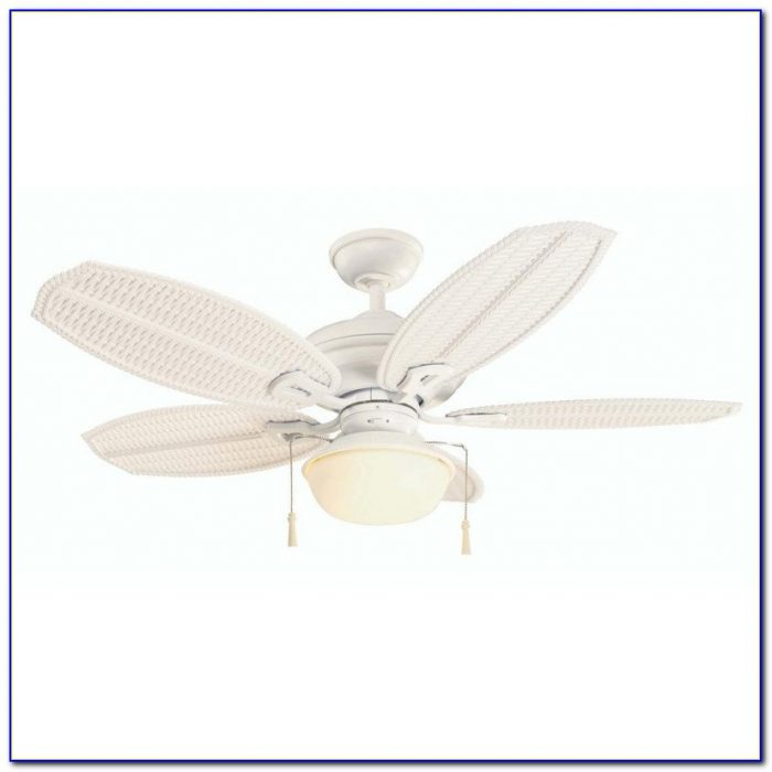 Hampton Bay Palm Beach 48 Ceiling Fan