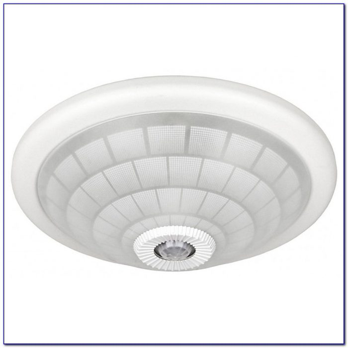Indoor Motion Detector Ceiling Light