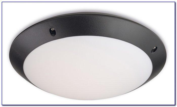 Motion Detector Ceiling Light Fixture