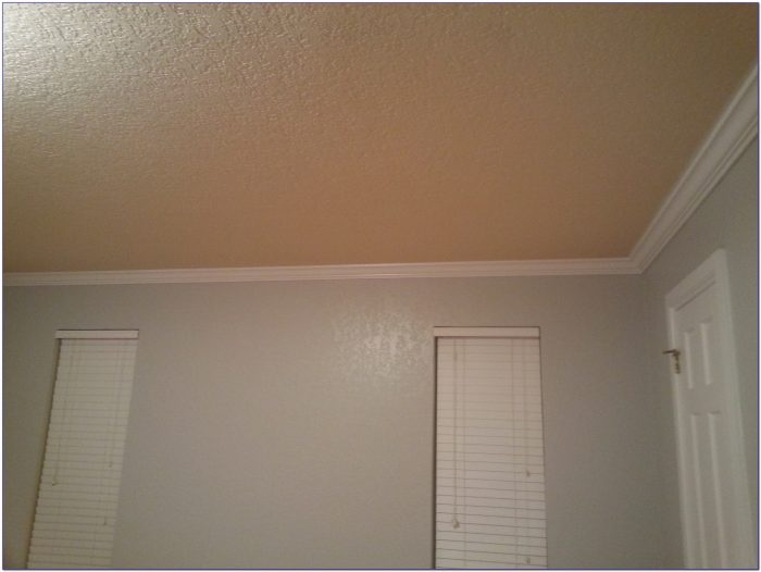 Mould Resistant Bathroom Ceiling Paint
