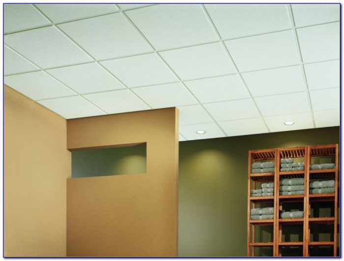 Vinyl Faced Ceiling Tiles Armstrong