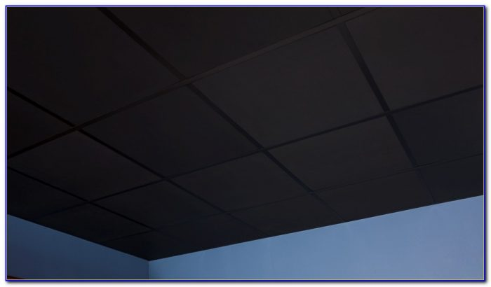 2x2 Black Ceiling Tiles