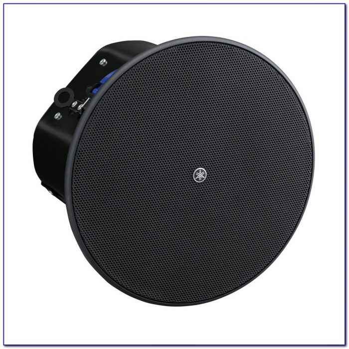 6 Or 8 Inch Ceiling Speakers