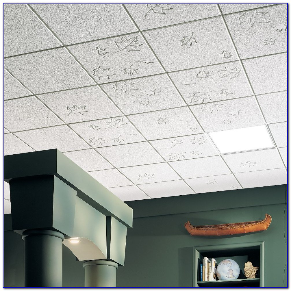 Armstrong Ceiling Tiles Commercial Kitchen Ceiling Home Design