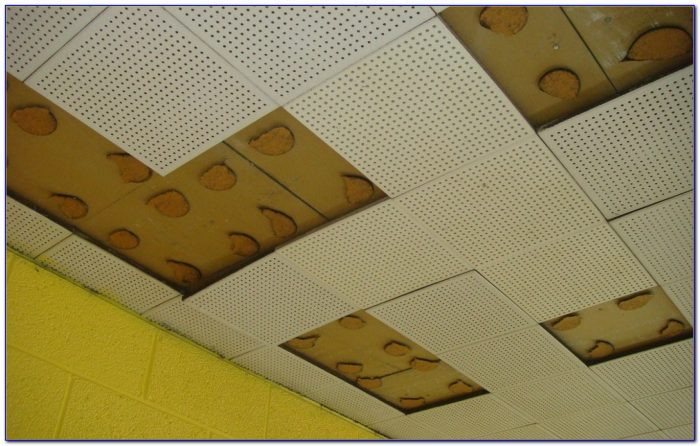 Armstrong Insulated Ceiling Panels
