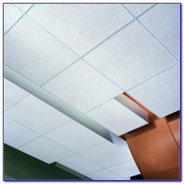Armstrong Mold Resistant Ceiling Tile