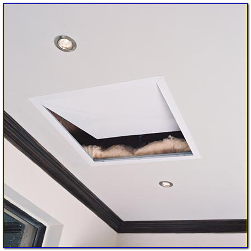 Ceiling Access Panel Standard Sizes