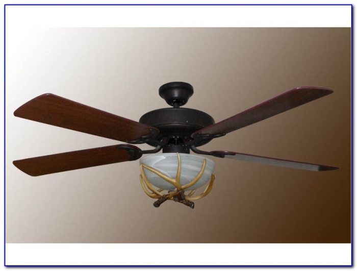 Ceiling Fans With Antlers