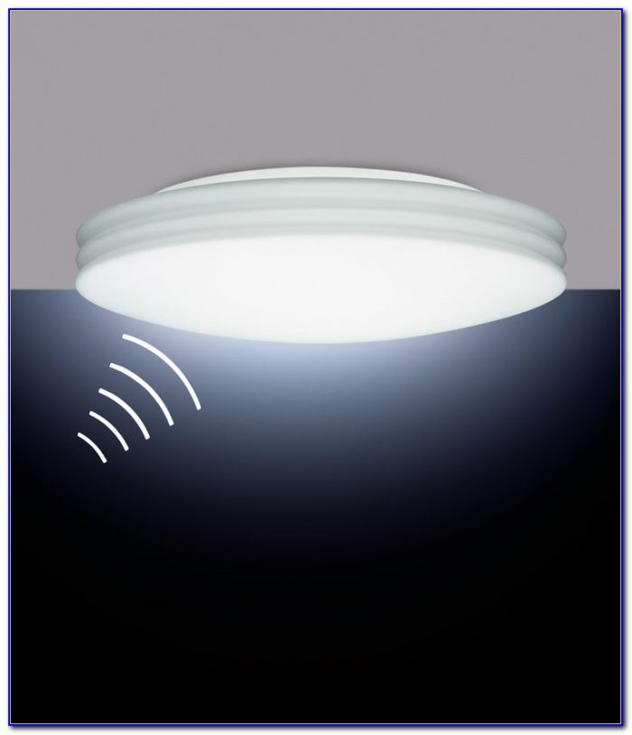 Ceiling Mount Motion Sensor Flood Light