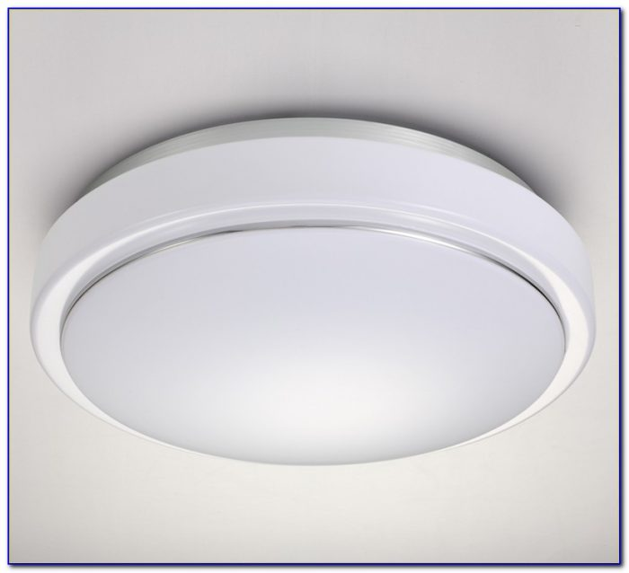 Motion Activated Ceiling Light Fixture