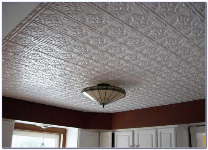 Pictures Of Barn Tin Ceilings