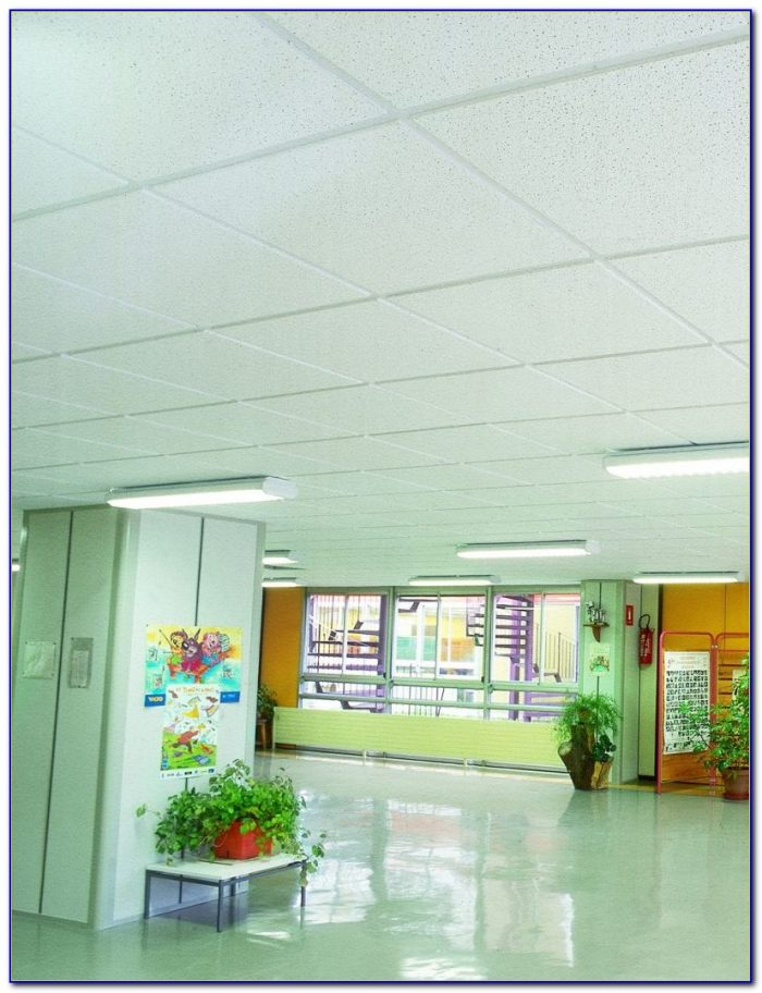 Armstrong Moisture Resistant Acoustical Ceiling Tile