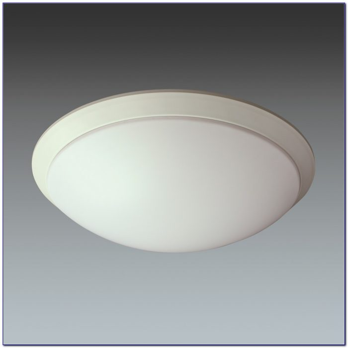 Ceiling Mounted Motion Sensor Light