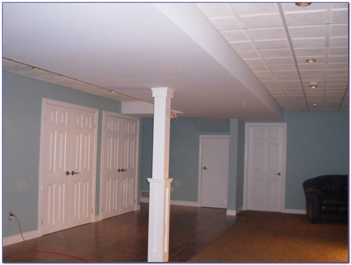 Drop Ceiling For Low Basement