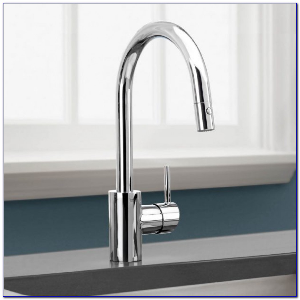 Hansgrohe Metro Kitchen Faucet Manual Faucet Home