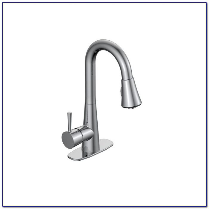 Laundry Sink Faucet With Sprayer