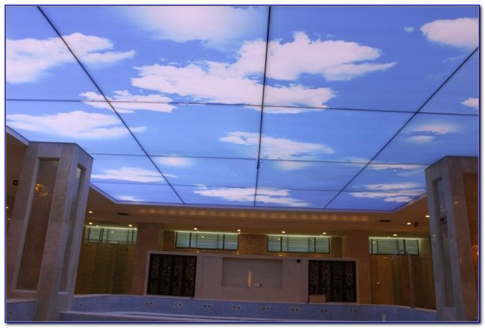 Pvc Stretch Ceiling Film Uk