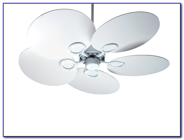 Whisper Quiet Ceiling Fans