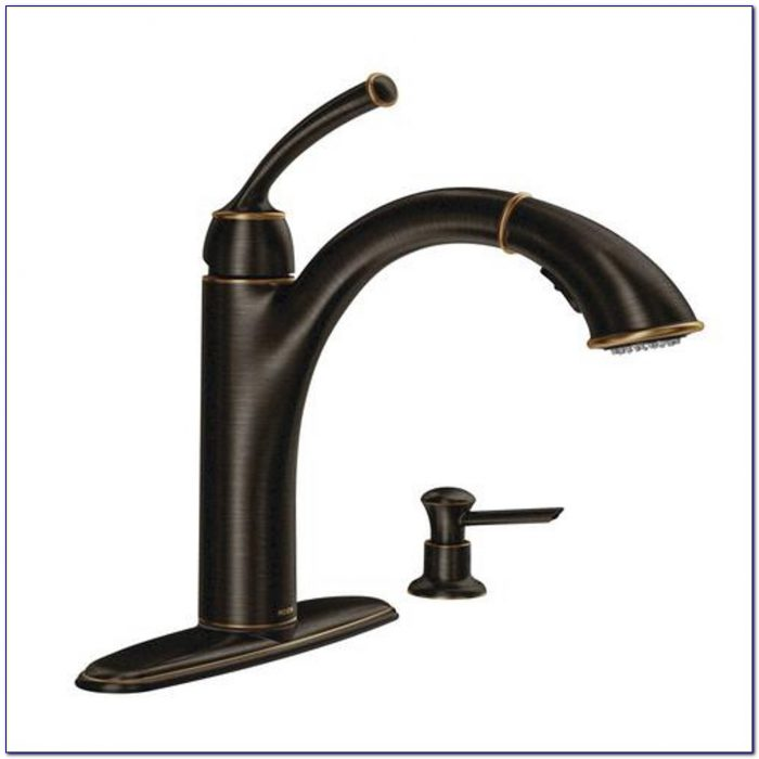 Kitchen Sink Faucets With Water Filter