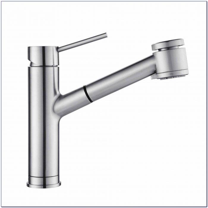 Moen Kitchen Faucet Leaking Double Handle