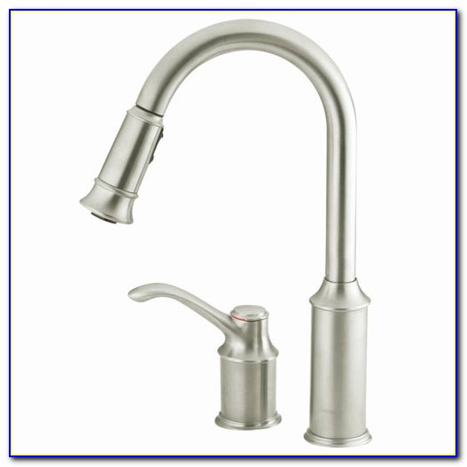 Moen Single Handle Pull Out Kitchen Faucets