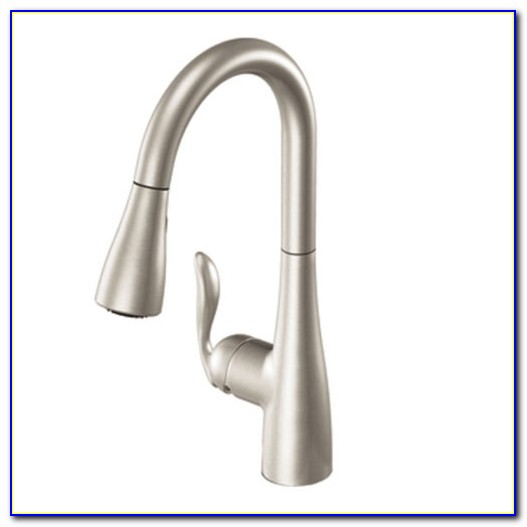 Moen Single Lever Pull Out Kitchen Faucet